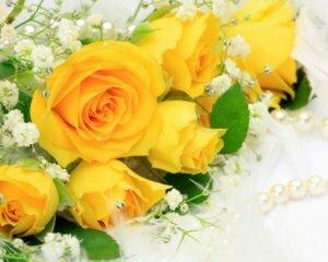 rozy-zheltye-cvety-cvetok